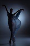 De mooie ballerina die met blauwe sluier dansen Stock Foto's