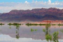 De mooie berg en het schone meerwater stock foto