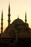 De mooie Blauwe Moskee in verticaal Istanboel, stock foto's