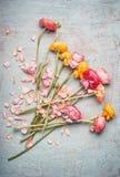 De mooie bloemen bundelen met kleurrijke boterbloemen op lichtblauwe rustieke achtergrond, hoogste mening Feestelijk groetconcept Royalty-vrije Stock Afbeelding