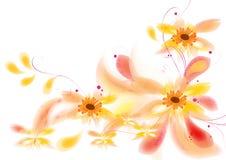 De mooie bloemen ontwerpen: Stock Afbeeldingen