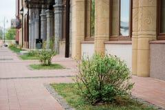 de mooie bouw in Ryazan, Rusland royalty-vrije stock afbeeldingen