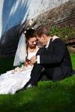De mooie bruid en de bruidegom zitten op het gras Royalty-vrije Stock Afbeeldingen