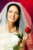 De mooie bruid met nam toe Royalty-vrije Stock Foto