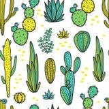 De mooie Cactussen vatten Natuurlijk Naadloos Patroon samen Stock Afbeeldingen