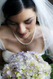 De mooie close-up van de Bruid Stock Afbeelding