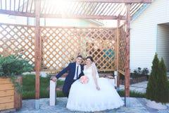 De mooie Dag van het Huwelijk Stock Afbeelding