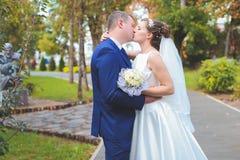 De mooie Dag van het Huwelijk Stock Afbeeldingen