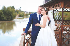 De mooie Dag van het Huwelijk Stock Foto's
