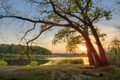 De mooie de zomerzonsondergang bij de rivier met blauwe hemel, rood en sinaasappel betrekt, groen bomen en water Stock Foto's