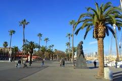 De mooie dijk van Barcelona stock afbeeldingen