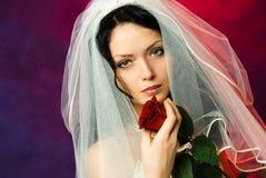 De mooie donkerbruine bruid met een rood nam toe Royalty-vrije Stock Foto