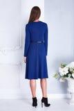 De mooie donkerbruine sexy modieuze catalogus van de vrouwenkleding Stock Afbeelding