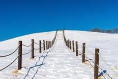 De mooie gang en de hemel van de sneeuwtrede met behandelde sneeuw, Wint Royalty-vrije Stock Foto's