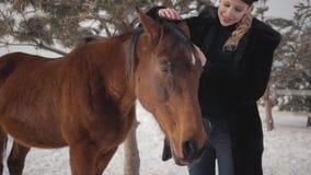 De mooie glimlachende vrouw strijkt snuit die van aanbiddelijk paard zich in de winterboerderij bevinden stock video