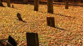 De mooie graven van het steengraf in een begraafplaats tijdens het seizoen van de dalingsherfst Vele oranje bladeren in de grond  royalty-vrije stock afbeelding