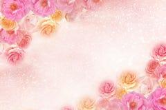 De mooie grens van de rozenbloem in zachte uitstekende toonkleur met schittert Romaanse achtergrond stock fotografie
