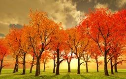 De mooie herfst Royalty-vrije Stock Afbeeldingen
