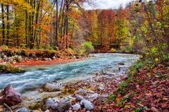 De mooie Herfst bij het Overzees van Koningen royalty-vrije stock afbeelding