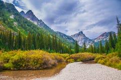 De mooie Herfst dichtbij Cascadekreek - het Nationale Park van Grand Teton stock foto's