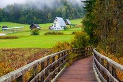 De mooie herfst kleurt bij het meer Zelenci op de achtergrond de Martuljek-berg dichtbij Kranjska Gora in nationale Triglav royalty-vrije stock afbeeldingen