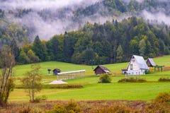 De mooie herfst kleurt bij het meer Zelenci op de achtergrond de Martuljek-berg dichtbij Kranjska Gora in nationale Triglav royalty-vrije stock foto's