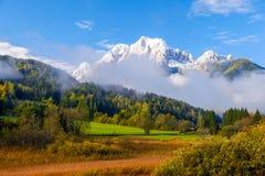 De mooie herfst kleurt bij het meer Zelenci op de achtergrond de Martuljek-berg dichtbij Kranjska Gora in nationale Triglav stock fotografie