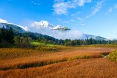 De mooie herfst kleurt bij het meer Zelenci op de achtergrond de Martuljek-berg dichtbij Kranjska Gora in nationale Triglav stock foto's