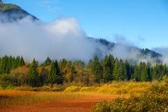 De mooie herfst kleurt bij het meer Zelenci op de achtergrond de Martuljek-berg dichtbij Kranjska Gora in nationale Triglav royalty-vrije stock foto