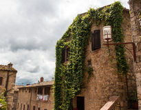 De mooie historische die bouw met vegetatie wordt overwoekerd Stock Foto's