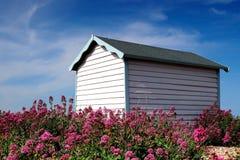 De mooie Hut van het Strand die door roze bloemen wordt omringd Stock Afbeelding