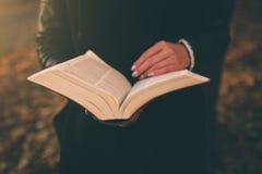 De mooie jonge donkerbruine zitting op de gevallen herfst gaat in een park, lezing een weg boek Stock Afbeelding