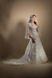 De mooie jonge vrouw in een huwelijkskleding Stock Fotografie
