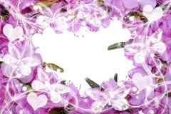 De mooie kaart van de bloemenuitnodiging met ruimte voor tekst Stock Foto's