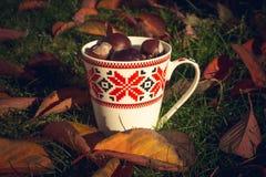De mooie kleurrijke herfst in Europa Royalty-vrije Stock Fotografie