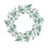 De mooie kroon van het waterverfhuwelijk met eucalyptus en bladeren royalty-vrije illustratie