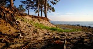 De mooie kust van Meer Baikal stock video