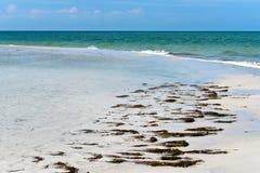 De mooie Kustlijn van Florida stock afbeeldingen