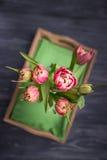 De mooie lente bloeit tulpen op een donkere achtergrond Hoogste mening Royalty-vrije Stock Foto's