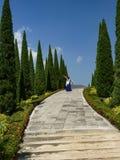 De mooie levensstijl Thailand van de tuinbloem Royalty-vrije Stock Foto