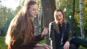 De mooie meisjes in de herfst parkeren zitting op algemeen en het spreken stock videobeelden