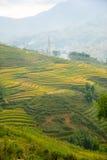 De mooie Mening van bergen bevat terrasvormige gebieden Stock Foto
