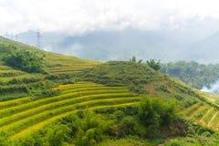 De mooie Mening van bergen bevat terrasvormige gebieden Stock Afbeeldingen