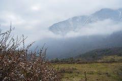 De mooie mening van vallei op Tibetan gebied Royalty-vrije Stock Foto's