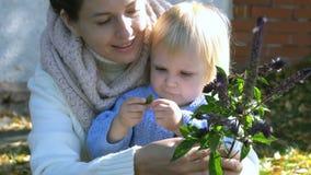 De mooie moeder met leuke dochter ruikt basilicum stock video