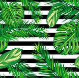 De mooie naadloze tropische achtergrond van het wildernis bloemenpatroon met palmbladen Stock Foto's