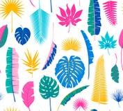 De mooie naadloze tropische achtergrond van het wildernis bloemenpatroon met verschillende palmbladen royalty-vrije illustratie