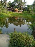 De mooie natuurlijke scènes van de dorpsvijver Royalty-vrije Stock Afbeelding