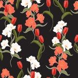 De mooie oranje tulp van de de zomer freshy In Wilde bloeiende bloem en alstroemeria naadloos patroon stock illustratie