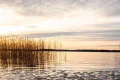 De mooie oranje zonsondergang van het de winterlandschap over kalm meerwater met ijsijsschol en riet tegen overzeese horizon stock afbeelding